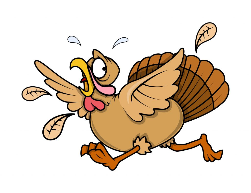 chicken-running-scared-gs