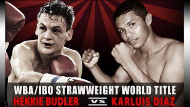 Photo of Hekkie Budler KO 1 Karluis Diaz – March 2014